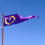 Omnibus Proposal Flag